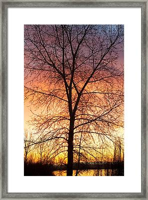 Sunrise December 16th 2010 Framed Print