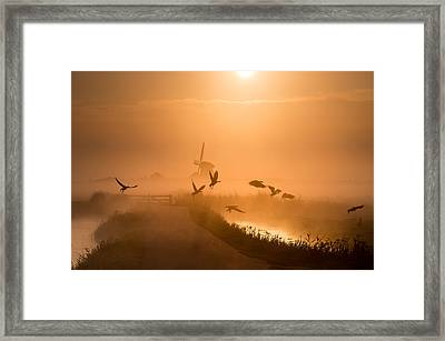 Sunrise Flight Framed Print by Harm Klaverdijk