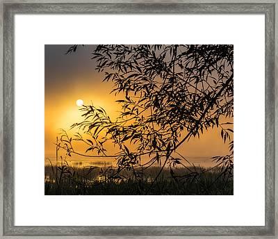Sunrise Fog Framed Print