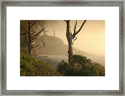 Sunrise Haze Framed Print by Lori Mellen-Pagliaro