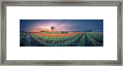 Framed Print featuring the photograph Sunrise, Hot Air Balloon And Moon Over The Tulip Field by William Lee