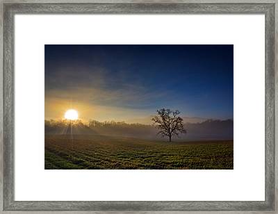 Sunrise In Cades Cove Framed Print