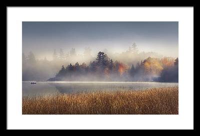 Fog Framed Prints
