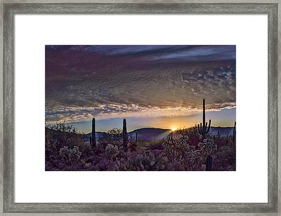 Framed Print featuring the photograph Sunrise In Sabino Canyon Remix by Dan McManus