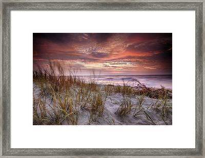 Sunrise In The Breeze Framed Print