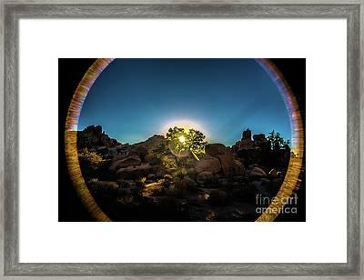 Sunrise Joshua Tree National Park Framed Print by Timothy Kleszczewski