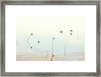 Framed Print featuring the photograph Sunrise Minalism by Carolyn Dalessandro