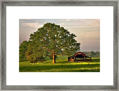 Sunrise Oak 2 The Red Barn Art Framed Print by Reid Callaway