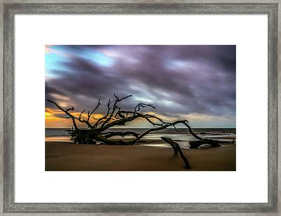Framed Print featuring the photograph Sunrise On Driftwood Beach, Jekyll Island, Ga by Michael Sussman