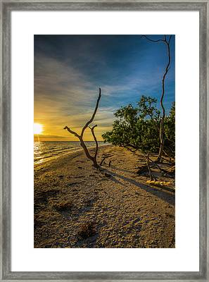 Framed Print featuring the photograph Sunrise On Lighthouse Beach by Steven Ainsworth