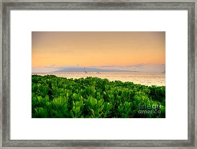 Framed Print featuring the photograph Sunrise On Maui by Kelly Wade