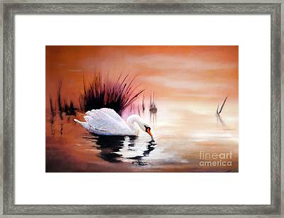 Sunrise On Swan Lake Framed Print