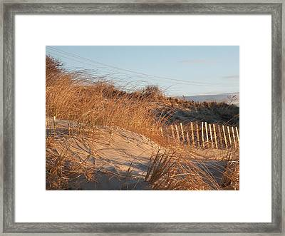 Sunrise On The Dunes Framed Print by Donald Cameron