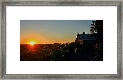 Framed Print featuring the photograph Sunrise On The Farm by Chris Berry