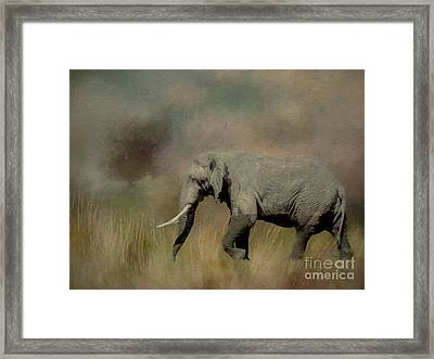Sunrise On The Savannah Framed Print