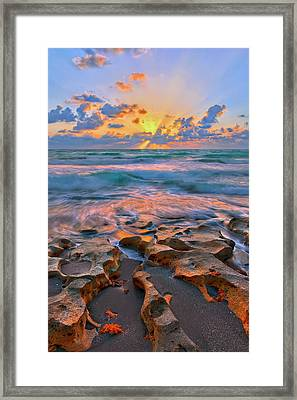 Sunrise Over Carlin Park In Jupiter Florida Framed Print
