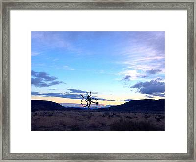 Sunrise Over Joshua Tree Framed Print by Nathalie Laurent-Marke