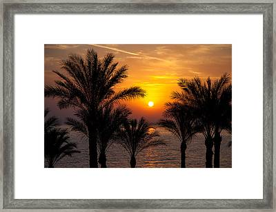 Sunrise Over The Red Sea Framed Print by Jane Rix