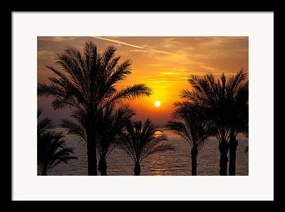 Sinai Framed Prints