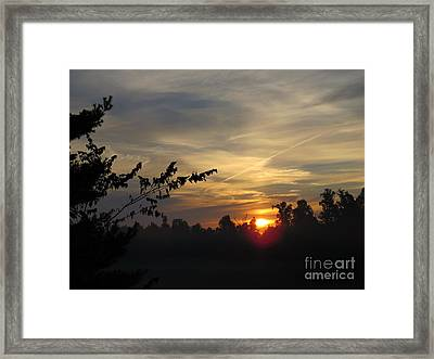 Sunrise Over The Trees Framed Print