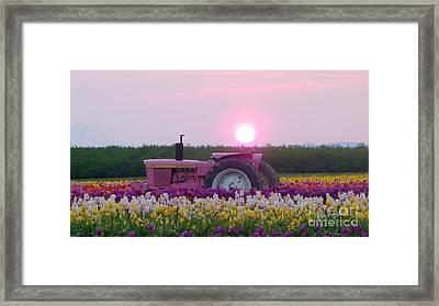 Sunrise Pink Greets John Deere Tractor Framed Print by Susan Garren