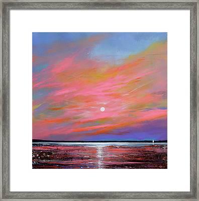 Sunrise Sail Framed Print by Toni Grote