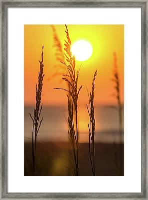 Sunrise Serenity Framed Print by AM Photography