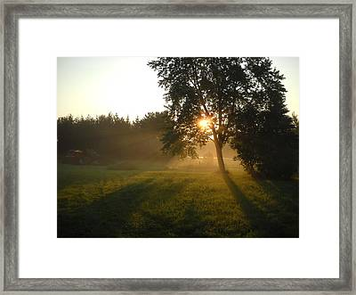Sunrise Shadows Through Fog Framed Print
