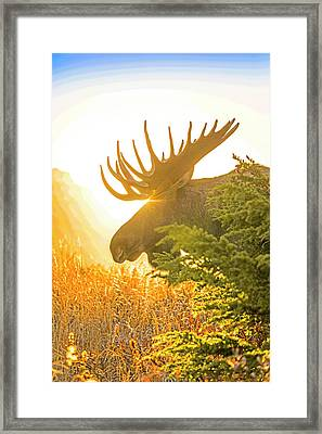 Sunrise Silhouette Abstract Framed Print