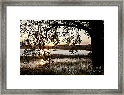 Sunrise Silhouette Framed Print by Susan Cole Kelly
