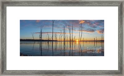 Sunrise Thru The Sticks Panorama Framed Print