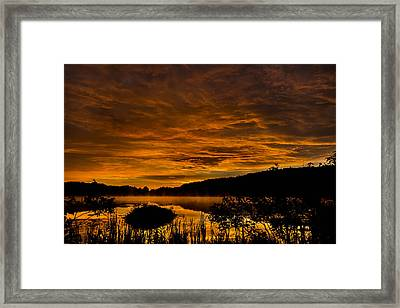 Sunrise Torpy Pond Framed Print