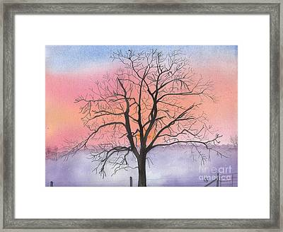 Sunrise Walnut Tree 2 Watercolor Painting Framed Print