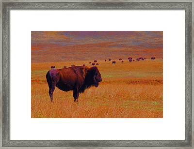 Sunrise Watch  Framed Print