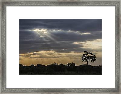 Sunset Africa 2 Framed Print by Kathy Adams Clark