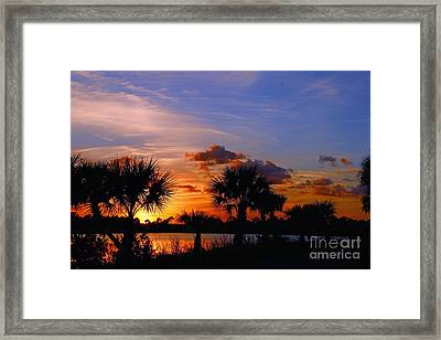 Sunset And Palm Trees Framed Print