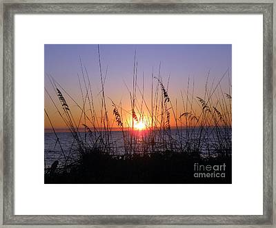 Framed Print featuring the photograph Sunset And Seaoats by Terri Mills