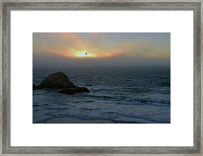 Sunset With The Bird Framed Print