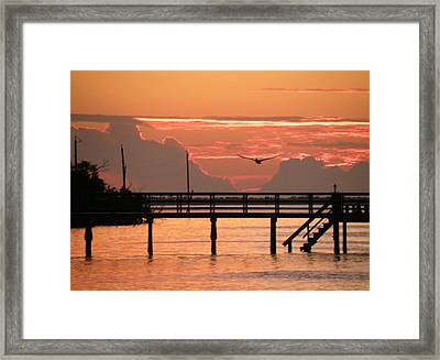 Framed Print featuring the photograph Sunset And The Fishing Dock by Rosalie Scanlon