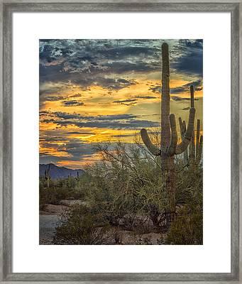 Sunset Approaches - Arizona Sonoran Desert Framed Print