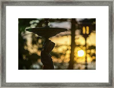 Framed Print featuring the photograph Sunset At Alameda Apodaca Cadiz Spain by Pablo Avanzini