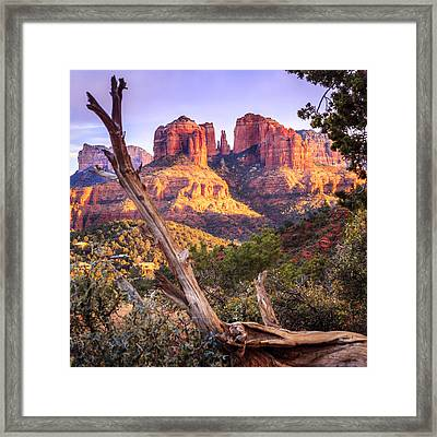 Sunset At Cathedral Rock Framed Print