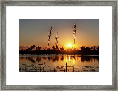 Framed Print featuring the photograph Sunset At Gator Hole 3 by Arthur Dodd