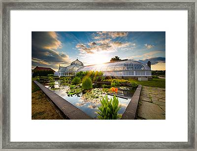 Sunset At Phipps Conservatory Framed Print by Emmanuel Panagiotakis