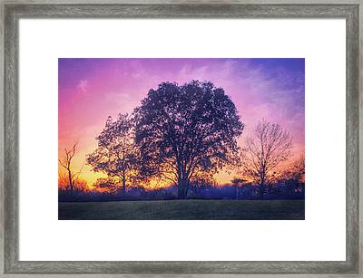 Sunset At Retzer Nature Center Framed Print by Jennifer Rondinelli Reilly - Fine Art Photography