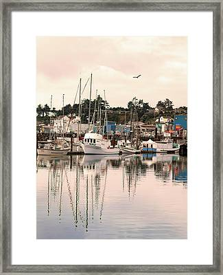 Framed Print featuring the photograph Sunset At The Marina by Diane Schuster