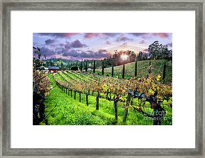 Sunset At The Palmers Framed Print by Jon Neidert