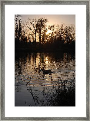 Sunset Framed Print by Audrey Venute