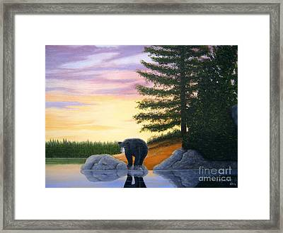 Sunset Bear Framed Print