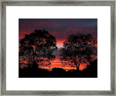 Sunset Behind Two Trees Framed Print